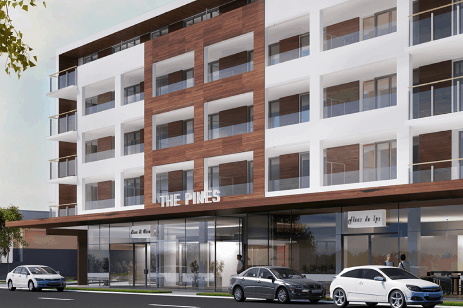 The Pines, Bute Road residential apartments in Auckland exterior design drawing