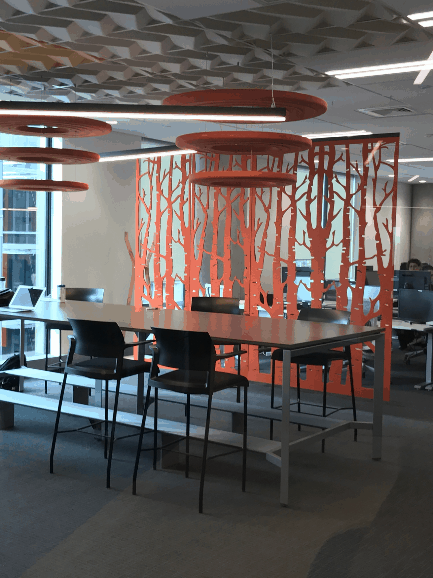 IBM office in Auckland workplace open meeting space with art used as room divider